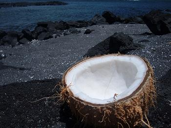 hawaiian-coconut