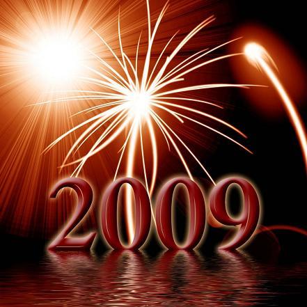Firework 2009-07